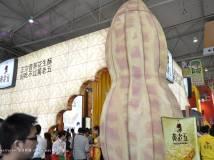 2013春季糖酒会