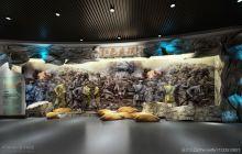 保质低价-最好的展厅设计 想中标找我们