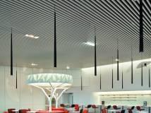 法国巴黎戴高乐机场的航空商务酒廊设计